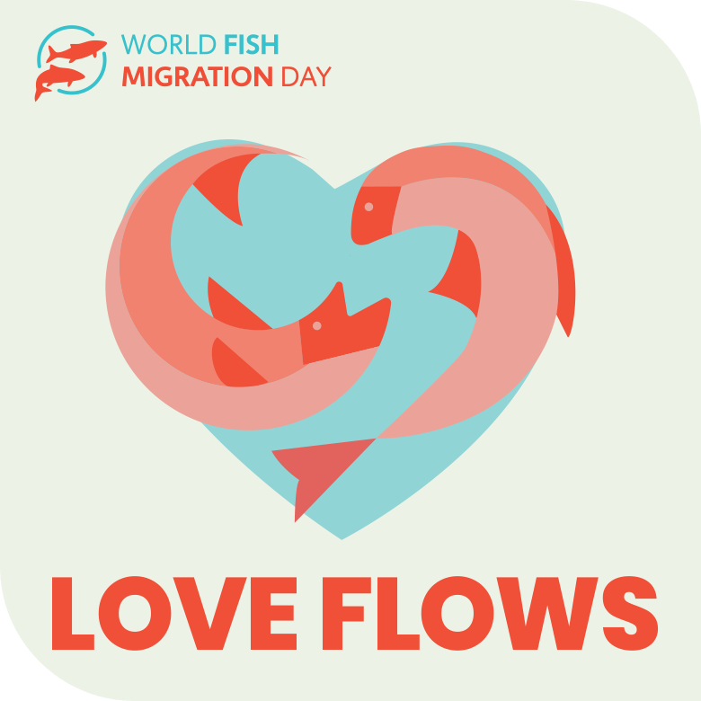 WFMD2020_loveflows